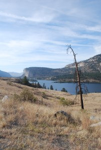 MacIntyre Bluff and Vaseaux Lake, looking south.