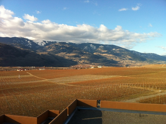 Looking north from Burrowing Owl Vineyards on the Black Sage bench.