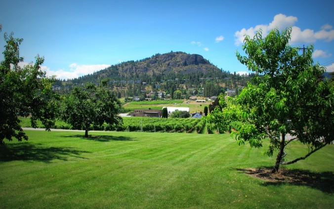 Mount Boucherie, at the center of the West Side Wine Trail